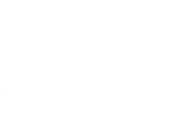 Loopy Lupine